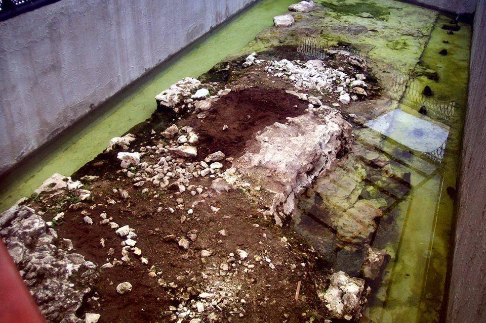 cimiento de muralla de Veracruz