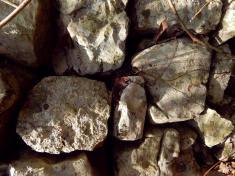 """La caliza del cerro Chiquihuite presenta características que fueron mencionadas en el DIARIO DEL VIAJE QUE HICIERA EL VIRREY Dn. JOSÉ DE ITURRIGARAY PARA RECORRER LA COSTA DE VERACRUZ, escrito por el arquitecto Luis Martin en 1805: """"Pasado el río del Chiquihuite se toma la falda de dicha sierra de Matlaquiahuitl en la que se observa caliza moderna fétida con impresiones de cuerpos orgánicos y una variedad de pedernal o piedra."""" — en Municipio de Atoyac."""