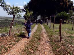 Nos despedimos del Cerro del Chiquihuite a las 1:33 PM para dirigirnos hacia San Alejo y Paso del Macho, Es muy seguro que no será la única vez que volvamos, pues tenemos aún muchas interrogantes que resolver y nuestra aportación a la historia de Veracruz, debe ser fundamentada en la veracidad y objetividad, no en el capricho personal ni de grupos de intereses particulares. NOS DESPEDIMOS DESEÁNDOLES UNA FELIZ SEMANA, LLENA DE PAZ AL LADO DE SUS SERES QUERIDOS