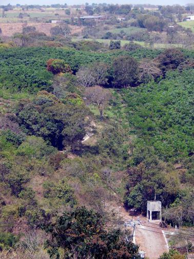 120 metros al sur del puente metálico del Chiquihuite, se puede ver el sendero del camino real que comunicaba las ciudades de Veracruz con México por la ruta de las villas de Córdoba y Orizaba, en el tramo entre Atoyac y Paso del Macho. Aquí, entre 1805 y 1836, se construyó el Puente del Chiquihuite. Se trata de un gran puente de mampostería de piedra con arco de medio punto rebajado. En 1863, los franceses ocuparon los grandes puentes del camino real (nacional desde 1824) situados en Atoyac, Chiquihuite, San Alejo, Paso del Macho y La Soledad. Controlando así, el tráfico comercial y militar entre Veracruz y Puebla